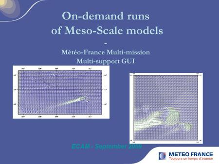On-demand runs of Meso-Scale models - Météo-France Multi-mission Multi-support GUI ECAM - September 2009.