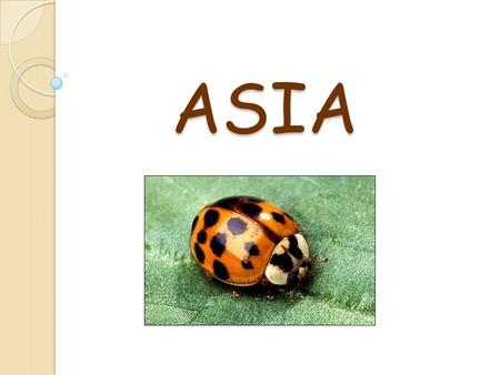 ASIA ASIA. Asia is the biggest and the most populated continent. Peking.