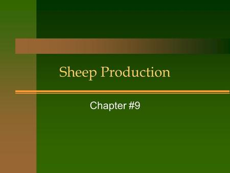 Sheep Production Chapter #9. Why choose sheep? n Sheep can survive where cows cant n Sheep will eat problem weeds like Leafy Spurge n Profit per acre.