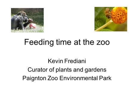 Feeding time at the zoo Kevin Frediani Curator of plants and gardens Paignton Zoo Environmental Park.