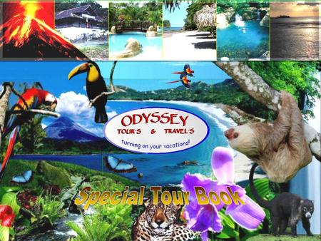 Welcome to the Costa Rica Experts virtual tour book Hopping you and yours be fine and sending you regards we want to introduce our small company but with.