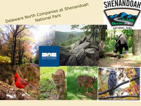 Delaware North Companies at Shenandoah National Park.