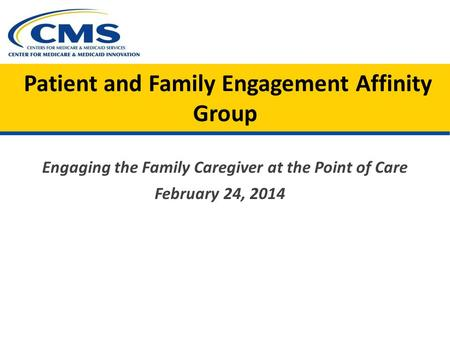 Patient and Family Engagement Affinity Group Engaging the Family Caregiver at the Point of Care February 24, 2014.