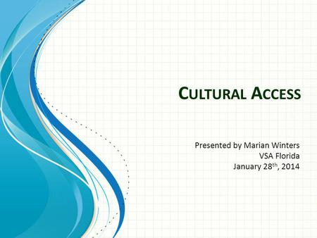 C ULTURAL A CCESS Presented by Marian Winters VSA Florida January 28 th, 2014.