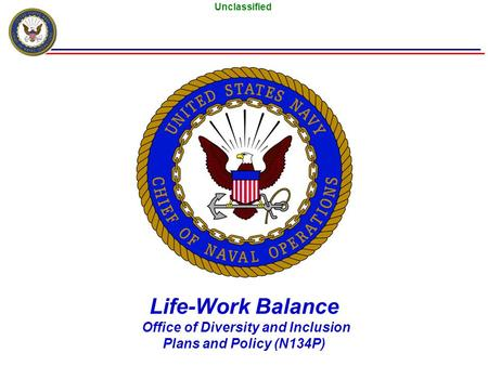 Unclassified Life-Work Balance Office of Diversity and Inclusion Plans and Policy (N134P)