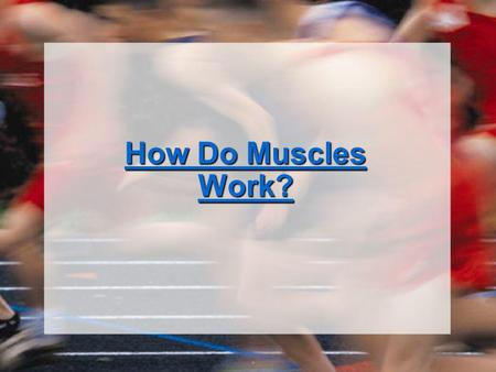 How Do Muscles Work?.