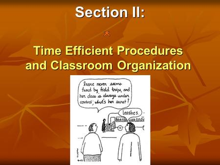 Section II: Time Efficient Procedures and Classroom Organization.