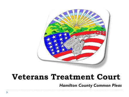 Hamilton County Common Pleas. Veterans Treatment Court This program can help with benefits, treatment, and housing. It can also help you reconnect with.