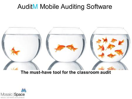 AuditM Mobile Auditing Software The must-have tool for the classroom audit.
