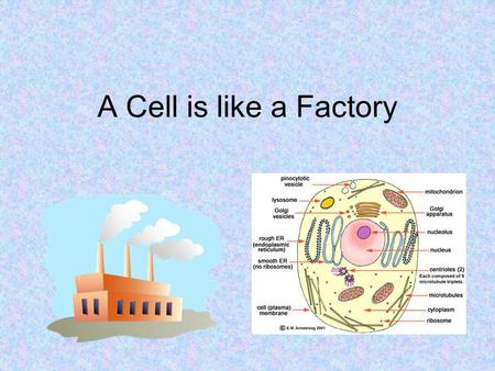 A Cell is like a Factory. Task 1 Glue the cell/factory chart into your journal.