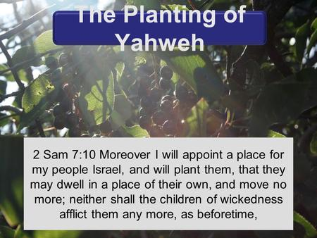 2 Sam 7:10 Moreover I will appoint a place for my people Israel, and will plant them, that they may dwell in a place of their own, and move no more; neither.
