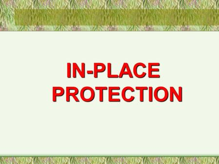 IN-PLACE PROTECTION. LEARNING OBJECTIVES Explain the objective of In Place Protection Identify the means of warning List the criteria in choosing room.