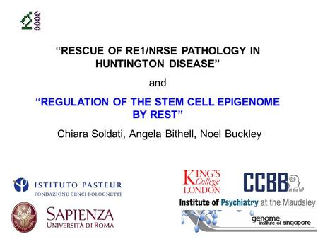 RESCUE OF RE1/NRSE PATHOLOGY IN HUNTINGTON DISEASE and REGULATION OF THE STEM CELL EPIGENOME BY REST Chiara Soldati, Angela Bithell, Noel Buckley.