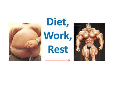 Diet, Work, Rest Learning Objectives Explain the importance of timing when you eat in competition Understand specific diets for specific sports Develop.