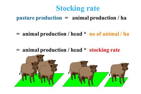 Stocking rate pasture production = animal production / ha = animal production / head * no of animal / ha = animal production / head * stocking rate.