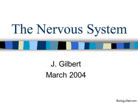 The Nervous System J. Gilbert March 2004 BiologyMad.com.