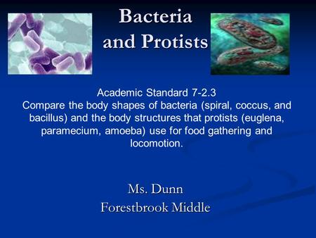 Bacteria and Protists Ms. Dunn Forestbrook Middle Academic Standard 7-2.3 Compare the body shapes of bacteria (spiral, coccus, and bacillus) and the body.