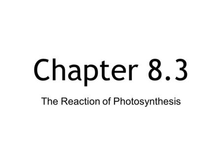 Chapter 8.3 The Reaction of Photosynthesis. The Chloroplast Site of photosynthesis.
