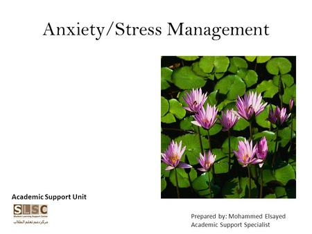 Anxiety/Stress Management Academic Support Unit Prepared by: Mohammed Elsayed Academic Support Specialist.