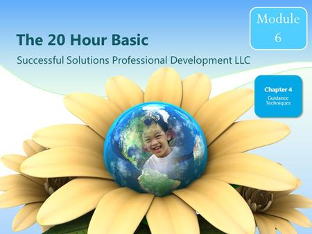 The 20 Hour Basic Successful Solutions Professional Development LLC Chapter 4 Guidance Techniques Module 6.