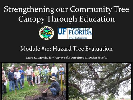 Strengthening our Community Tree Canopy Through Education Module #10: Hazard Tree Evaluation Laura Sanagorski, Environmental Horticulture Extension Faculty.