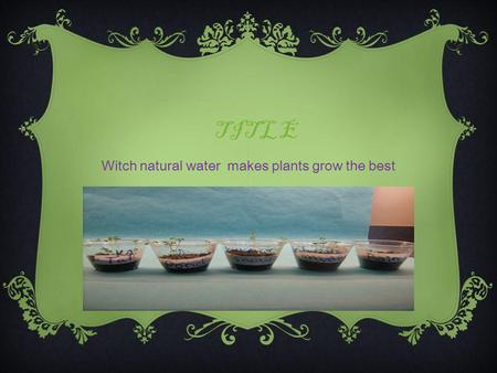 TITLE Witch natural water makes plants grow the best.