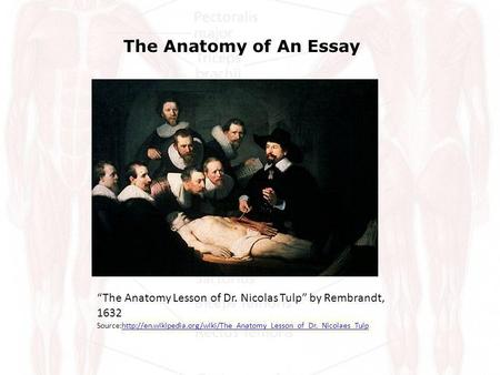 The Anatomy of An Essay The Anatomy Lesson of Dr. Nicolas Tulp by Rembrandt, 1632 Source:http://en.wikipedia.org/wiki/The_Anatomy_Lesson_of_Dr._Nicolaes_Tulphttp://en.wikipedia.org/wiki/The_Anatomy_Lesson_of_Dr._Nicolaes_Tulp.