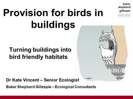 Provision for birds in buildings Turning buildings into bird friendly habitats Dr Kate Vincent – Senior Ecologist Baker Shepherd Gillespie – Ecological.