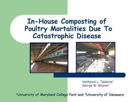 Nathaniel L. Tablante 1 George W. Malone 2 1 University of Maryland College Park and 2 University of Delaware In-House Composting of Poultry Mortalities.