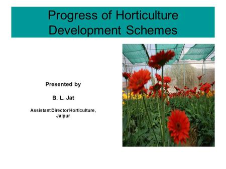 Progress of Horticulture Development Schemes Presented by B. L. Jat Assistant Director Horticulture, Jaipur.