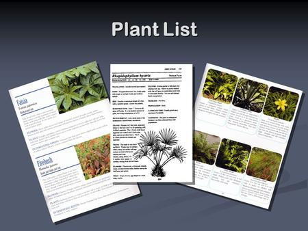 Plant List. Design Considerations Ecology Ecology Function Function Aesthetics Aesthetics.