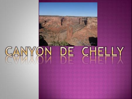 The Ancient Puebloans found the Canyons an Ideal place to plant crops and raise families.