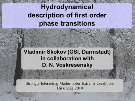 Hydrodynamical description of first order phase transitions Vladimir Skokov (GSI, Darmstadt) in collaboration with D. N. Voskresensky Strongly Interacting.