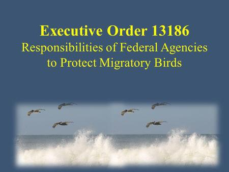 Executive Order 13186 Responsibilities of Federal Agencies to Protect Migratory Birds.