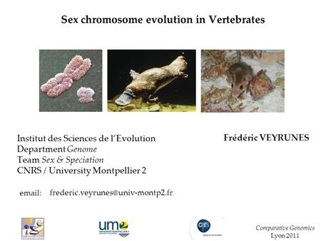 Sex chromosome evolution in Vertebrates