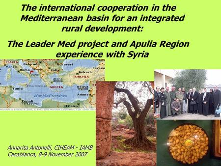 The international cooperation in the Mediterranean basin for an integrated rural development: The Leader Med project and Apulia Region experience with.