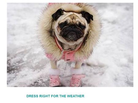DRESS RIGHT FOR THE WEATHER. Love your neighbor as yourself.
