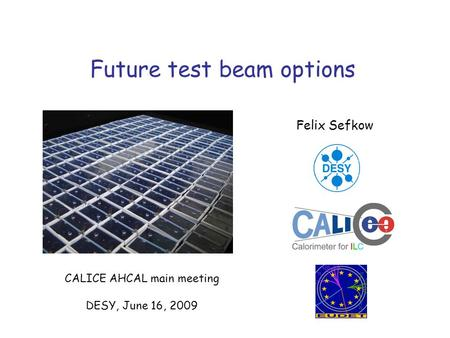 Future test beam options Felix Sefkow CALICE AHCAL main meeting DESY, June 16, 2009.