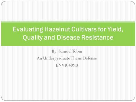 By: Samuel Tobin An Undergraduate Thesis Defense ENVR 499B Evaluating Hazelnut Cultivars for Yield, Quality and Disease Resistance.