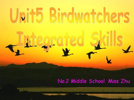 No.2 Middle School Miss Zhu. sing a song watch a bird show go to Zhalong complete the report write a report.