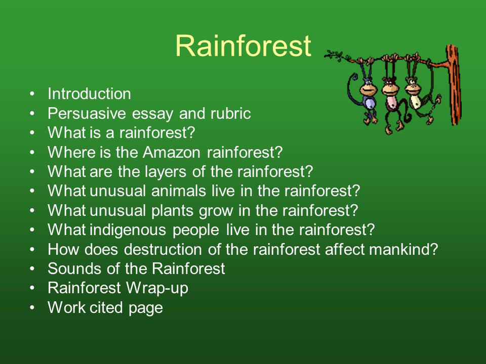 Introduction Rainforests cover less than two percent of the Earth s surface, yet they are home to some 50 to 70 percent of all life forms on our planet.