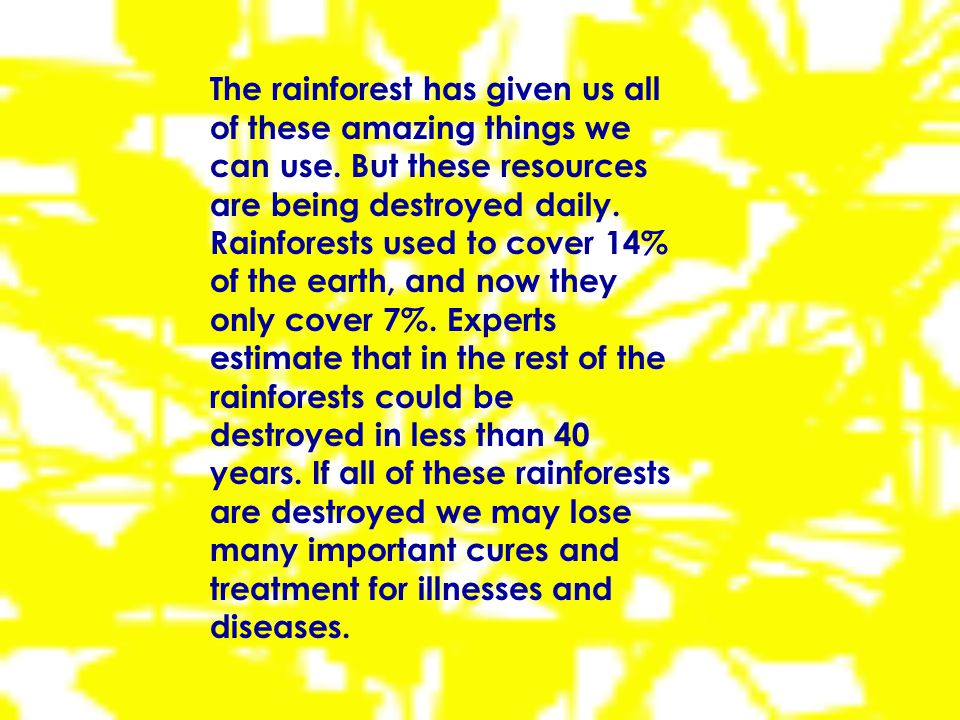 Some people believe that leaving the rainforests intact and harvesting its many goods, would turn a greater profit than just cutting them down for timber or cattle grazing land.