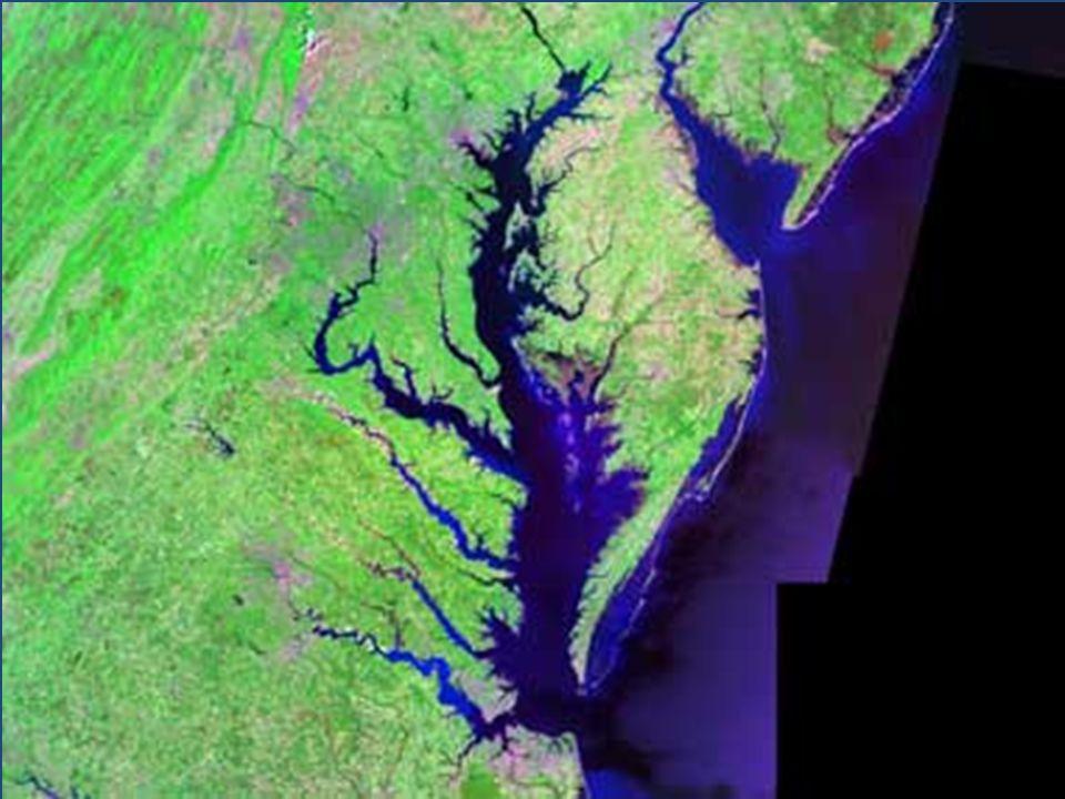 Oceans Intertidal Areas Neritic Zones Open Ocean