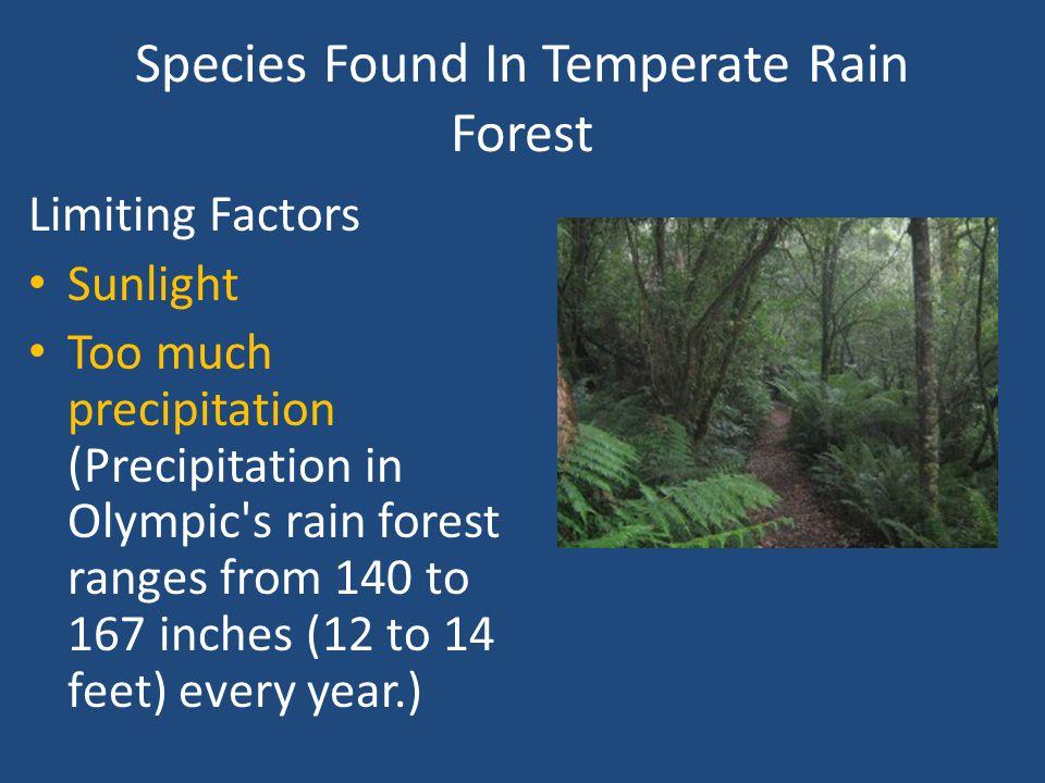 Threats Timber/Logging