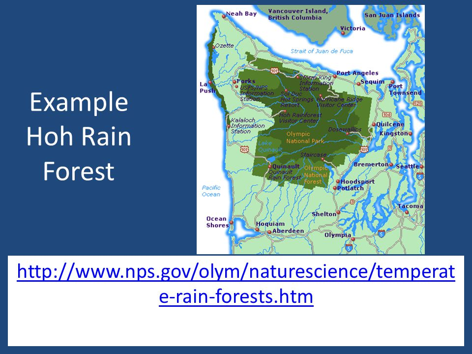 Temperate Rain Forest Cites http://www.nps.gov/olym/naturescience/tem perate-rain-forests.htm http://www.nps.gov/olym/naturescience/tem perate-rain-forests.htm https://biomesfirst09.wikispaces.com/Temper ate+Rainforest+Home https://biomesfirst09.wikispaces.com/Temper ate+Rainforest+Home http://www.marietta.edu/~biol/biomes/temp rain.htm http://www.marietta.edu/~biol/biomes/temp rain.htm