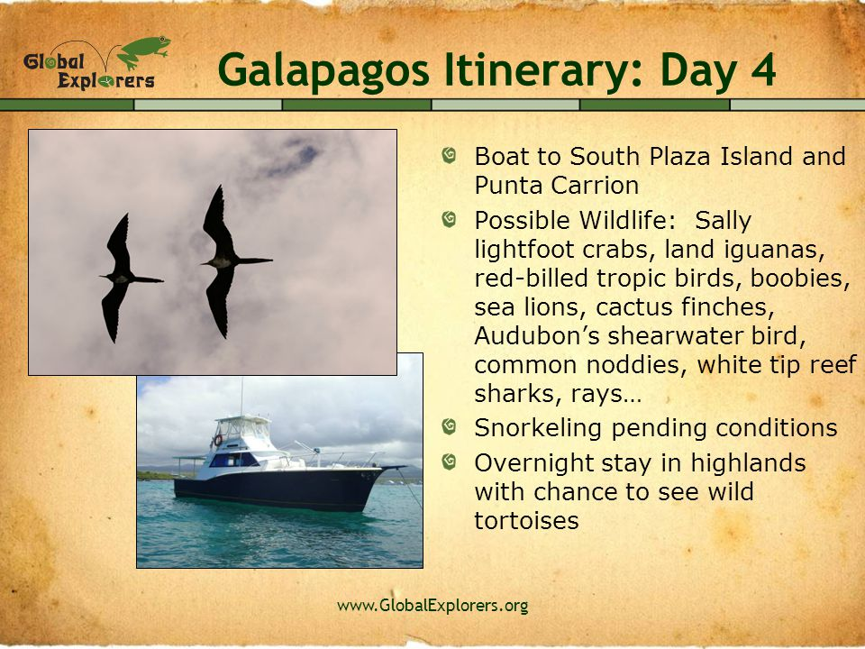 www.GlobalExplorers.org Galapagos Itinerary: Day 5 Visit local farm School visit Community service project such as a beach clean-up Group Evening Activity: Service Discussion