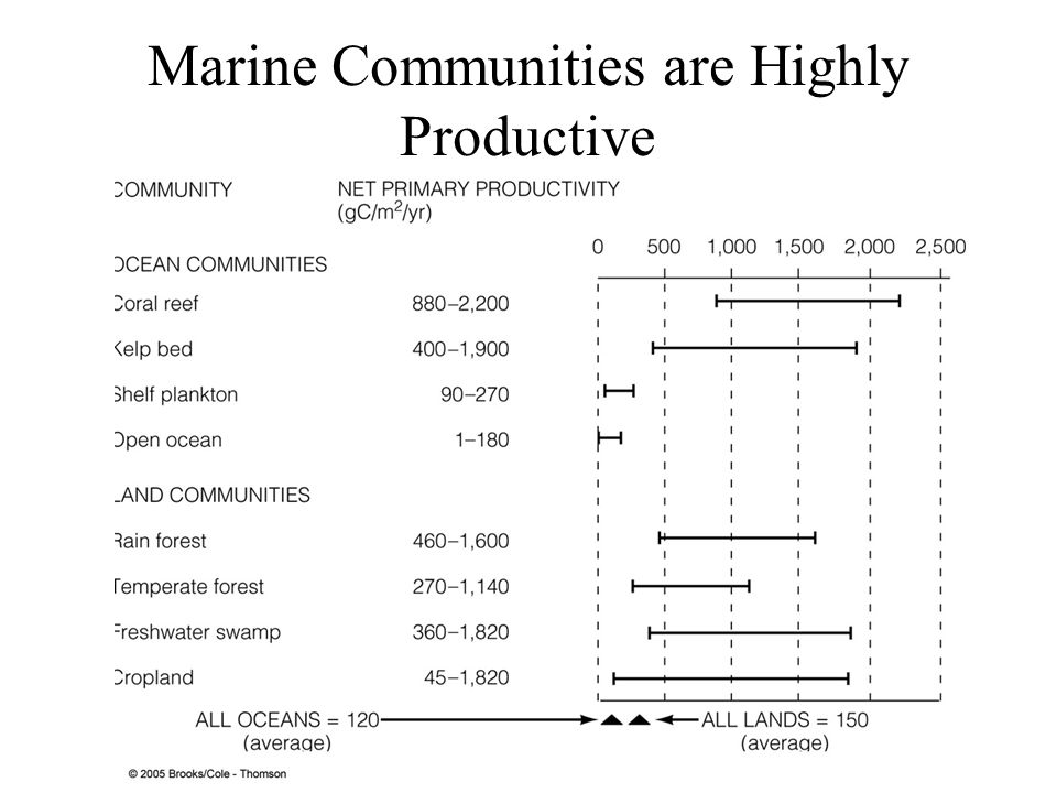 Marine Communities Store Less Organic Carbon and Turnover Rates are Faster than Terrestrial Communities