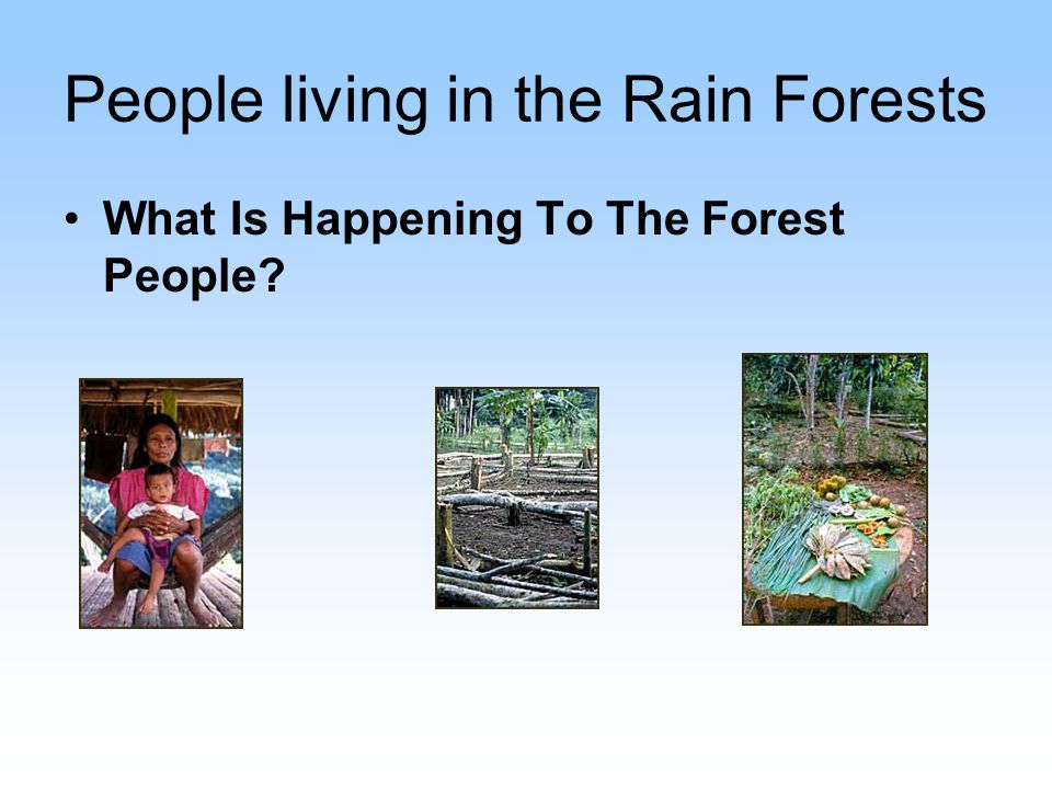 Deforestation for agriculture and ranching, mining, and road building all pose major threats to this region.