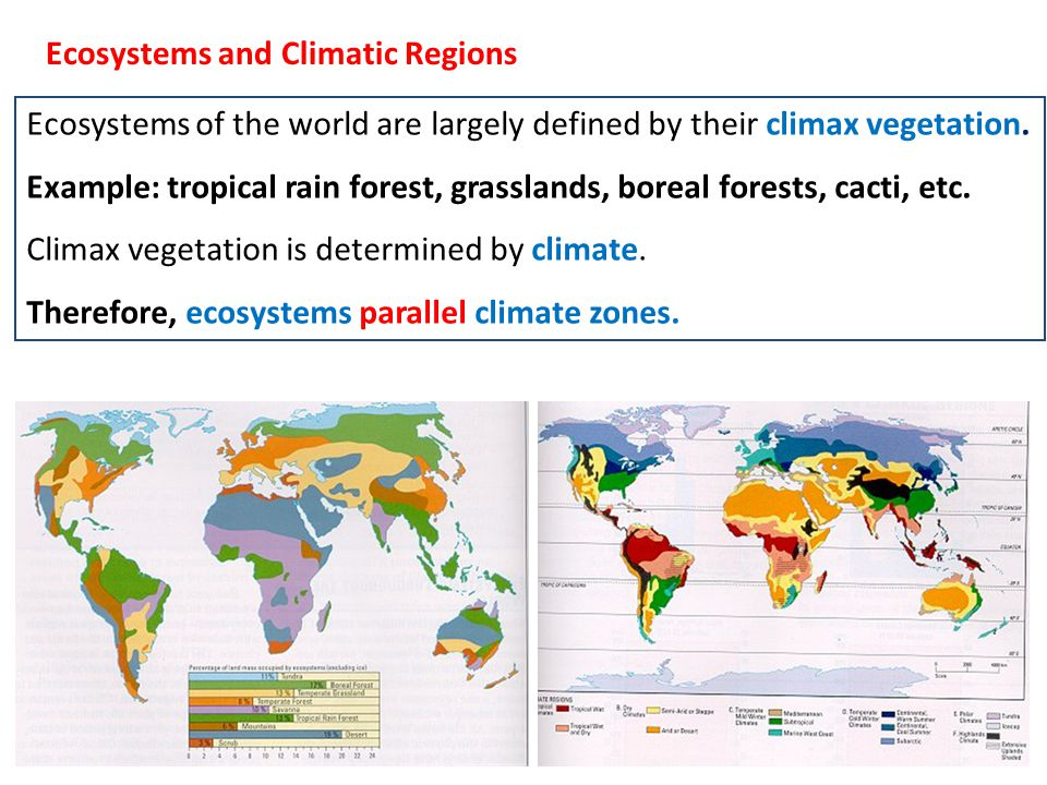 Arid gives Desert Semi-Arid gives Grassland Tropical Wet gives Tropical Rain Forest Temperate cold winter gives Boreal Forest Temp.