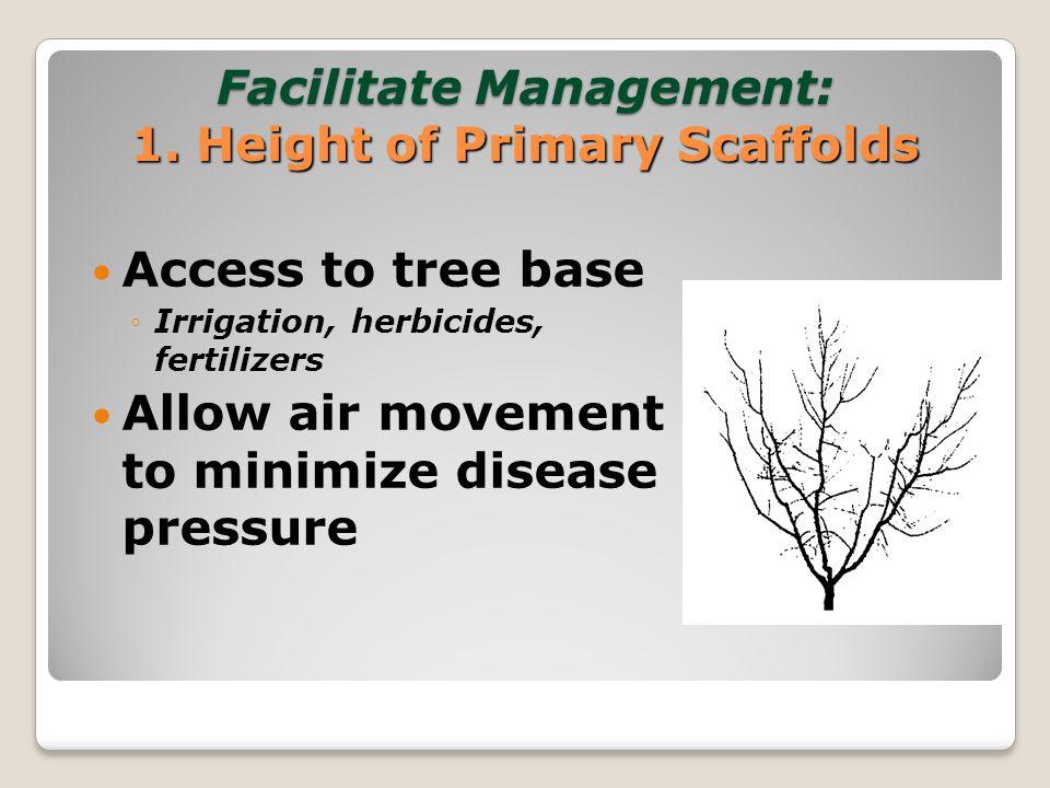Facilitate Management: 2.